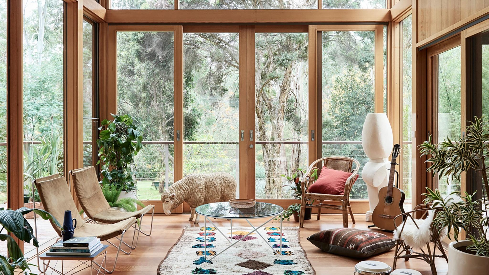 sheep-in-lounge