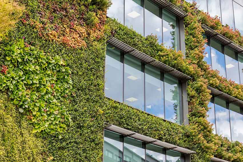 building-with-foliage-small